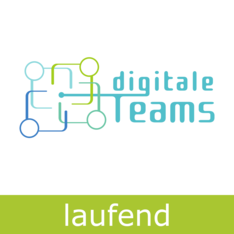 Digitale-Teams-Logo